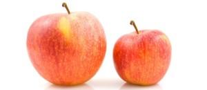 big-small-apple-690x300